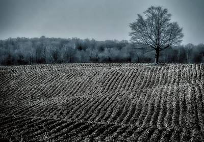 Farmfield Furrows Art Print by Henry Kowalski
