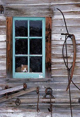 Window Sill Photograph - Farmhand by Latah Trail Foundation