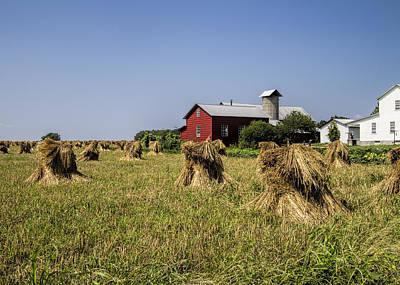 Ethridge Photograph - Farming Amish Style by Kathy Clark
