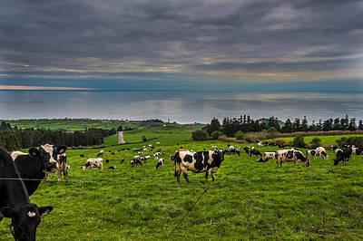 Photograph - Farming by Joseph Amaral
