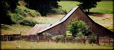 Photograph - Farming by Kathy Sampson