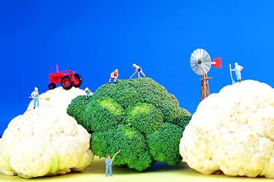 Cabbage Digital Art - Farming On Broccoli And Cauliflower by Paul Ge
