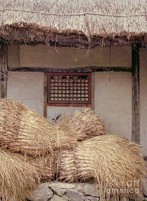 Photograph - farming village photograph - Korean Bales by Sharon Hudson