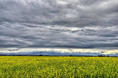 Photograph - Farmland by David Martorelli