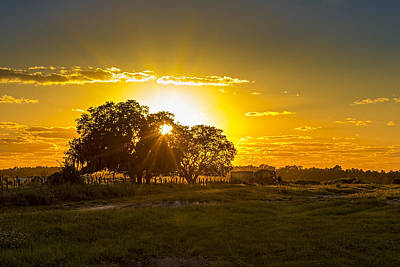 Barbwire Photograph - Farmland Sunset by Marvin Spates
