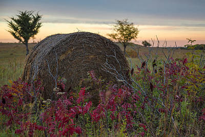 Photograph - Farmland Sunset by Ryan Heffron