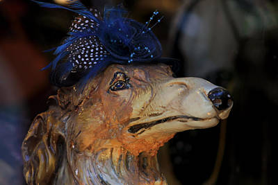 Photograph - Fascinating Fascinator by Jim Vance