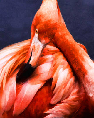Orange Digital Art - Fashion Conscious Flamingo by Georgiana Romanovna