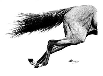 Bay Horse Drawing - Faster Than The Speed Of Camera by Kayleigh Semeniuk