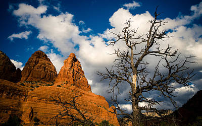 Photograph - Father Sky And Mother Earth by Roger Chenery
