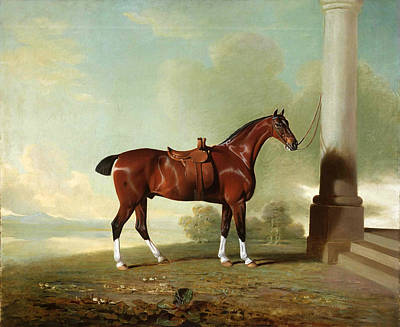 Famous Horse Art Painting - Favorite Chestnut Hunter Of Lady Frances Stephens  Nee Lady Frances Pierrepont  by Benjamin Marshall