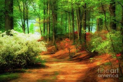 Photograph - Favorite Path - Painterly by Lois Bryan
