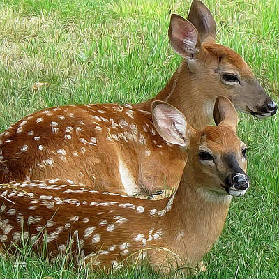 Digital Art - Fawn Fare by Jim Pavelle