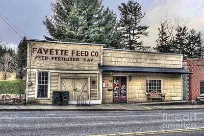 Fayette Feed Co Art Print by Dan Friend