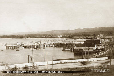 Photograph - F. E. Booth Cannery And Fishermans Wharf Looking East From The Lower Presidio 1910 by California Views Mr Pat Hathaway Archives