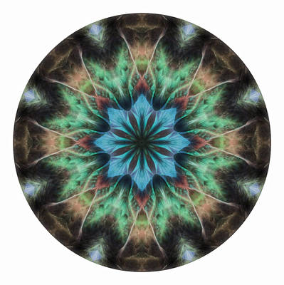 Photograph - Feather Mandala 1 by Beth Sawickie
