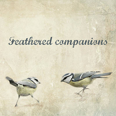 Winter Fun Mixed Media - Feathered Companions by Heike Hultsch