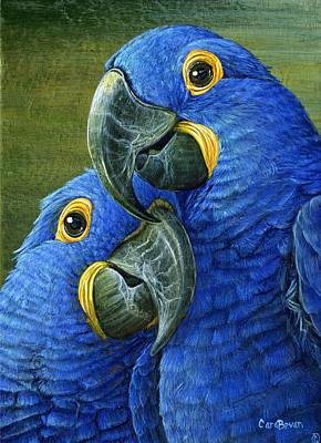 Hyacinth Painting - Feathered Friend by Cara Bevan