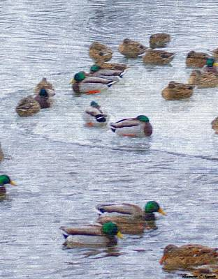 Painting - February  And Cold Ducks by Rosemarie E Seppala