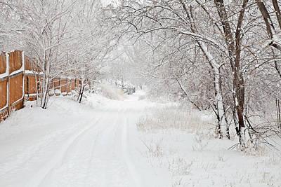 Photograph - February Snow by Theresa Tahara