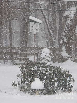 Photograph - February Snowstorm   Ny by Judy Via-Wolff