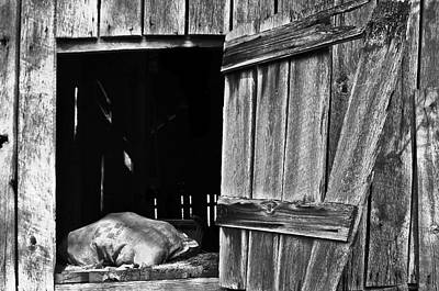 Photograph - Feed Sack In Barn Loft Opening B/w by Greg Jackson