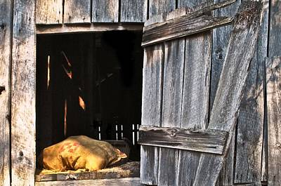 Photograph - Feed Sack In Barn Loft Opening by Greg Jackson