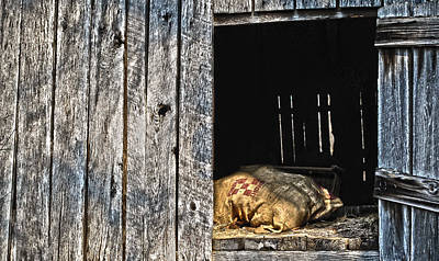 Photograph - Feed Sack In Loft by Greg Jackson