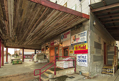 Cattle Dog Photograph - Waxahachie Feed Store by Robert Frederick
