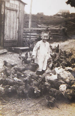 Photograph - Feed The Chickens by Christy Usilton