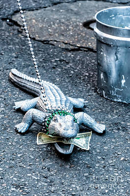 Street Photograph - Feed The Gator - Nola  by Kathleen K Parker