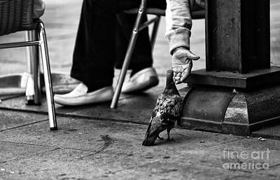 Feeding A Pigeon Mono Art Print by John Rizzuto