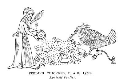 Psalter Painting - Feeding Chickens by Granger