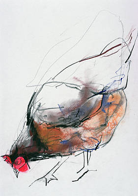 Rooster Wall Art - Drawing - Feeding Hen, Trasierra by Mark Adlington
