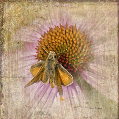 Feeding Moth Art Print
