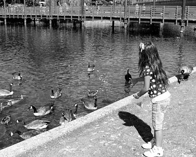 Art Print featuring the photograph Feeding The Birds by Heidi Manly