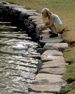 Art Print featuring the photograph Feeding The Ducks by ELDavis Photography