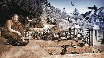 Photograph - Feeding The Pigeons  by Ian Gledhill