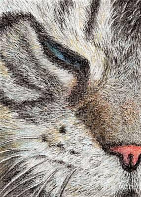 Kitten Painting - Feel Like Sleeping by Jingfen Hwu