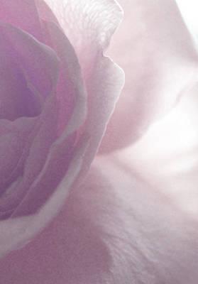 Magical Photograph - Feeling Sensitive by The Art Of Marilyn Ridoutt-Greene