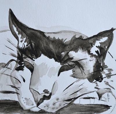 Catnap Painting - Feline by Beverley Harper Tinsley