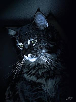 Photograph - Feline Night Watch by M Spadecaller