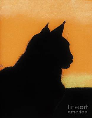 Drawing - Feline - Sunset by D Hackett