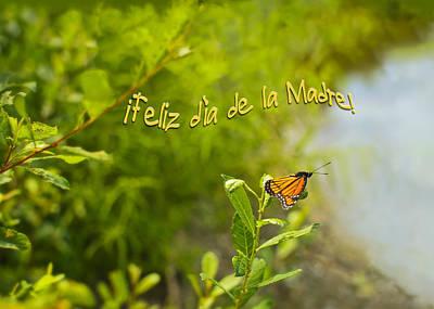 Photograph - Feliz Dia De La Madre Mariposa by Marianne Campolongo