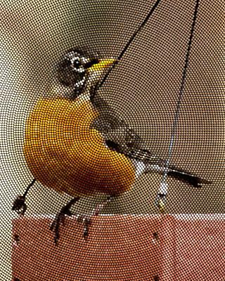 Photograph - Female American Robin by Robert L Jackson