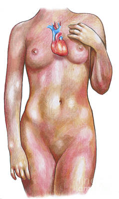 Photograph - Female Body With Heart by Gwen Shockey