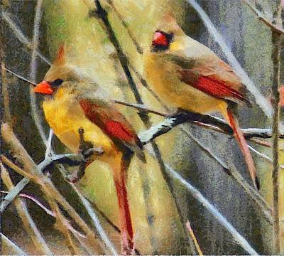 Digital Art - Female Cardinals by Carrie OBrien Sibley