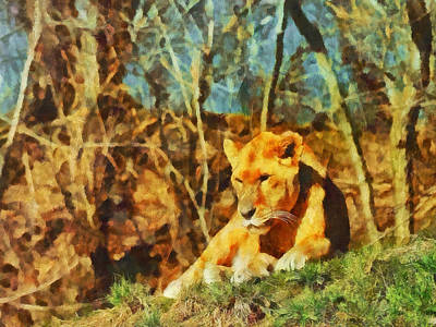 Digital Art - Female Lion by Digital Photographic Arts