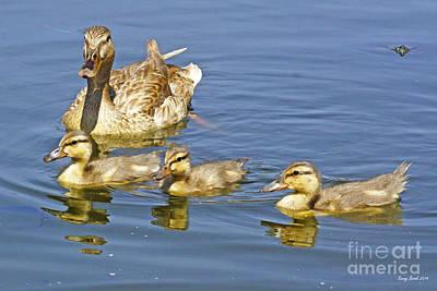 Baby Mallards Digital Art - Female Mallard Duck Plus Three by Kenny Bosak