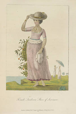 Female Quadroon Print by British Library
